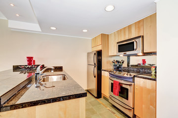 Small practical Kitchen interior. Apartment building in Seattle