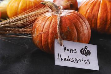 pumpkin and thanksgiving card
