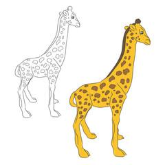 Two circuits giraffe