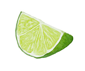 Watercolor slice of lime isolated on white background.