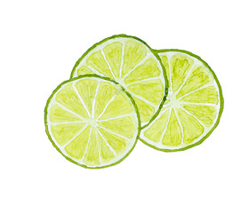 Three slices of lime isolated on white background. Watercolor il