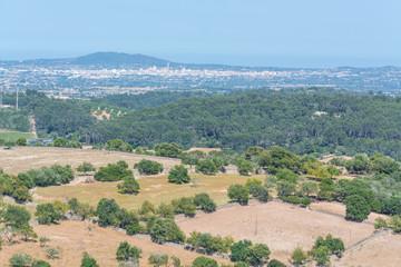 Landwirtschaft auf Mallorca