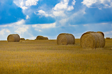 Golden straw bales on farmland. Abstract background.