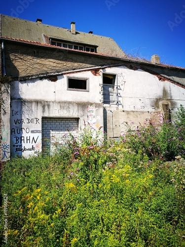 Verwilderter Garten Auf Einem Grundstück Neben Einer Alten Werkstatt