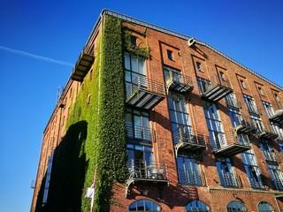 Saniertes altes Speichergebäude aus Backstein mit begrünter Fassade vor blauem Himmel am Hafen von Münster in Westfalen im Münsterland