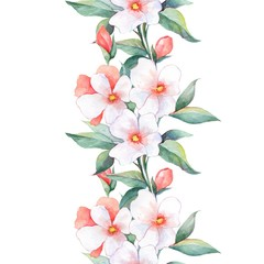 White flowers. Watercolor floral background. Seamless border