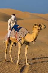 Zelfklevend Fotobehang Egypte Desert landscape with camel