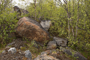 Big rocks in tundra above Arctic Circle, Russia