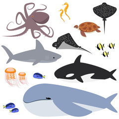 ocean, ocean collection of animals , fish