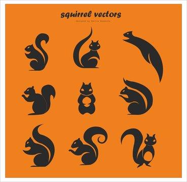 Cute black squirrel logo vectors