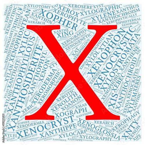 Letter X With 100 Words Word Cloud Starting With Letter X