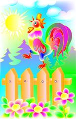 Illustration of beautiful cock, vector cartoon image.
