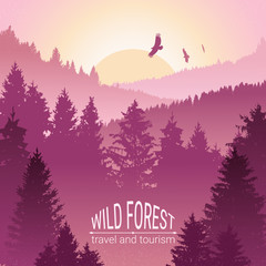Wild forest. Sunrise, mountains, pine and spruce. Eagles, and birds in flight. Tourism and travel. Camping. The horizon line in the fog. Silhouettes of trees. Environmental colorful banner.