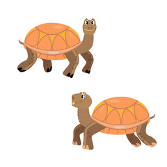 Turtles cartoon, orange, smile, isolated