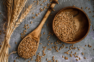 Ears of Wheat and Spoon of Wheat Grains