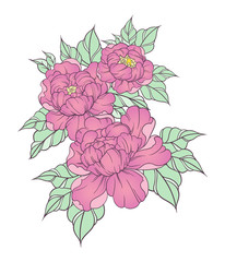 Hand drawn peonies in japanese tattoo traditional style.