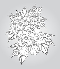 Hand drawn peonies in japanese tattoo traditional style. Floral