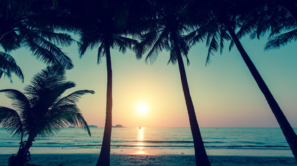 Sunset and silhouette of palm trees on the beach.