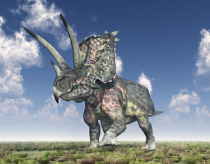 Dinosaurier Pentaceratops