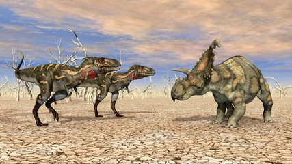 Nanotyrannus and Albertaceratops