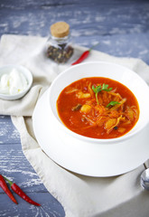 Borsch, russian national red soup