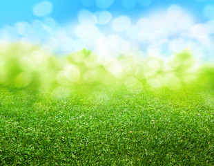 green grass blurred background