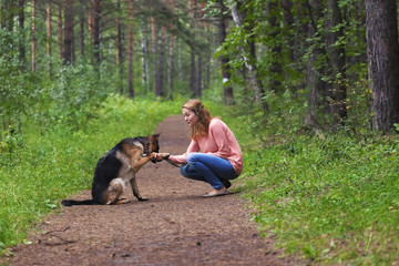 Young woman playing with German shepherd