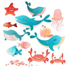 Sea inhabitants set