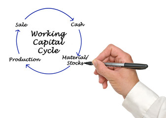 Wall Mural - Working Capital Cycle