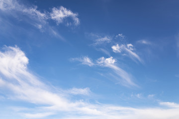 small curly clouds against the background of a clear sky
