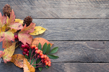 Autumnal wooden backdrop with copy space for text. Top view. Yellow leaves and berries