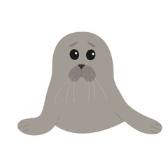 Cute seal pup baby harp. Cartoon character. White background. Isolated. Flat design