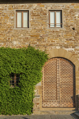 Fototapete - Ivy and retro wooden door of old Italian house in Florence, Tuscany, Italy
