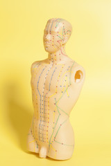 Medical acupuncture model of human on yellow background