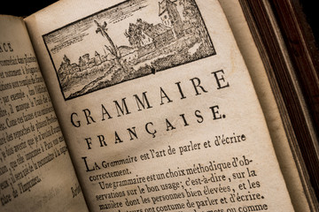 Preface of an old french book about a reform of grammar. General principles of the french language. M. de Wailly 1724 - 1801 Wall mural