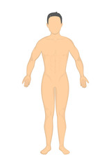 Isolated naked man. Mockup man without face and genitals. Concept of mannequin for biology, science or fashion.