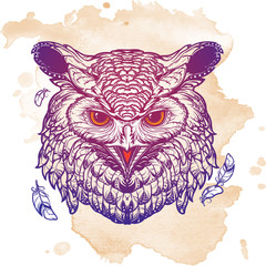 Owl sketch isolated on grunge background