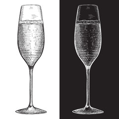 Glass of champagne or sparkling wine. Hand drawn sketch