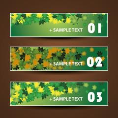 Banner or Header Design - Autumn Leaves