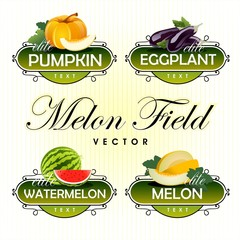 Melon, watermelon, pumpkin, eggplant. Vector