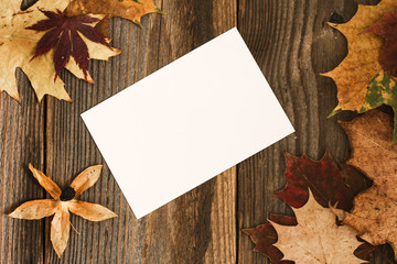 Autumn leaves background. / Autumn leaves and white card on the table.