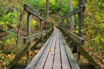Rickety Wooden Foot Bridge