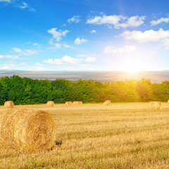 Straw bales on a wheat field and sunrise on sky