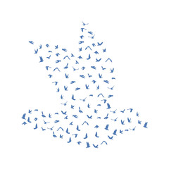 Doves and pigeons set for peace concept and wedding design. Flying blue birds sketch set. Vector