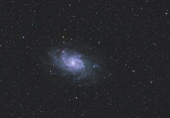 Dreiecksgalaxie / Triangulum Galaxy