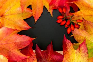 viele bunte Blätter liegen auf einer Tafel