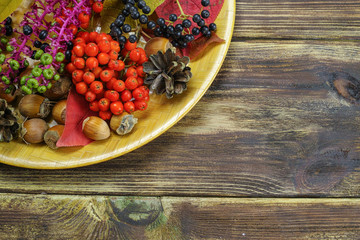 Autumn restaurant menu free text copy space with forest berries