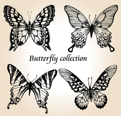 Butterfly set. Insect sketch collection for design and scrapbooking, vector hand drawn illustration, silhouette, isolated