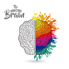 the amazing brain isolated vector illustration design