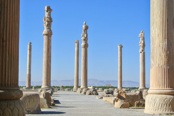 The Apadana of Persepolis in Iran